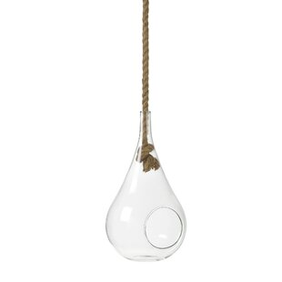 Frisbie Glass Hanging Basket By Beachcrest Home