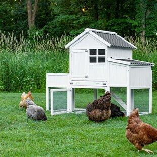 Herb Garden Chicken Coop With Chicken Run, Nesting Box, Roosting Bar By My Pet Chicken