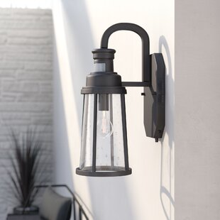 Cascades 1-Light Metal Outdoor Wall Lantern