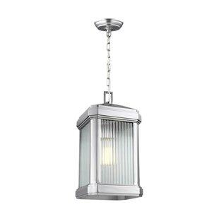 Red Barrel Studio Meghan 1-Light Outdoor Hanging Lantern