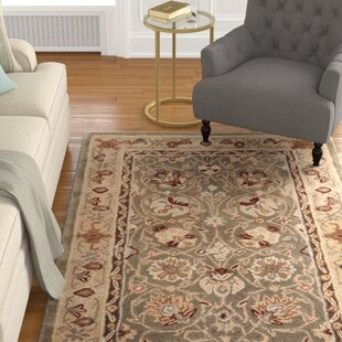 Affordable Price Angus Hand-Hooked Sage/Beige Area Rug By Charlton Home