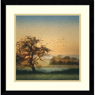 Good By Day Birds Framed Photographic Print Alcott Hill