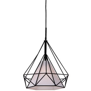 1-Light Pendant by Efficie..