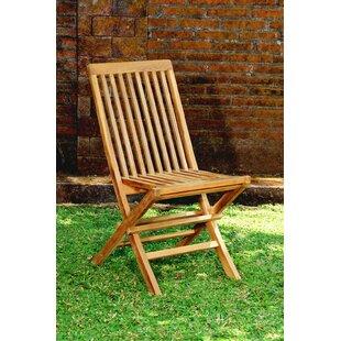 Arinze Garden Chair (Set Of 2) By Sol 72 Outdoor