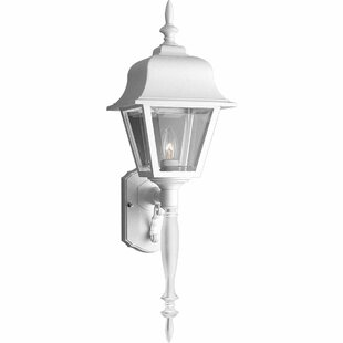 Cranbrook 1-Light Outdoor Sconce by Alcott Hill
