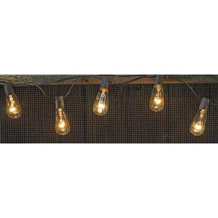 The Holiday Aisle Hoang Edison Light Strand 10 ft. 10-Light Globe String Lights
