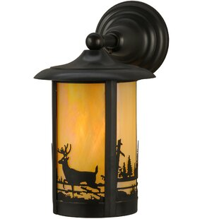 Purchase 1-Light Outdoor Wall Lantern By Meyda Tiffany