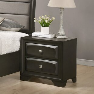 Winston Porter Beagan Wood 2 Drawer Nightstand