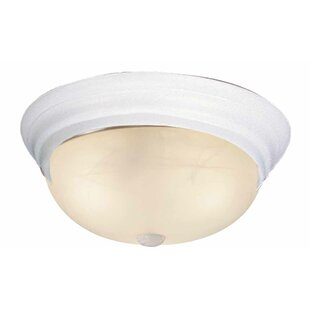 Volume Lighting 1-Light Ceilin..
