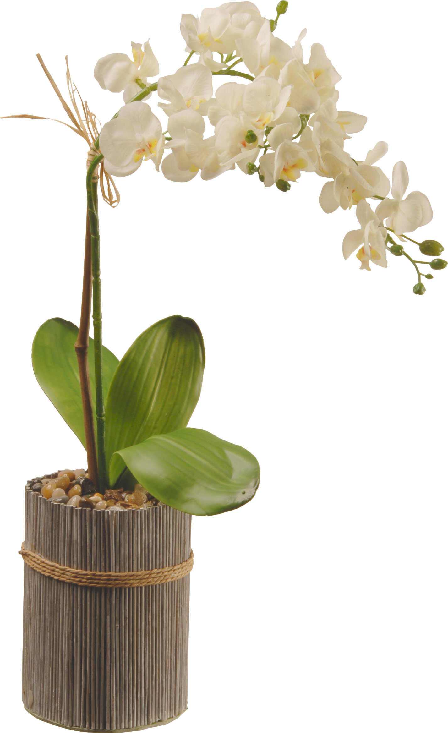 Faux white orchid in decorative wooden vase reviews joss main reviewsmspy