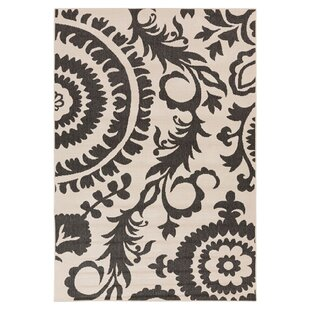 Amato Parchment & Pewter Indoor/Outdoor Rug ByAlcott Hill
