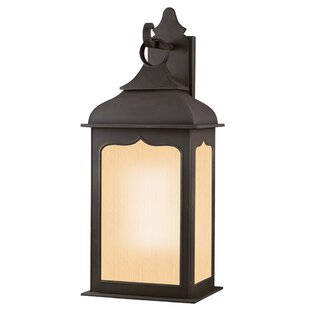 Theodore 2-Light Colonial Iron Outdoor Wall Lantern by Darby Home Co