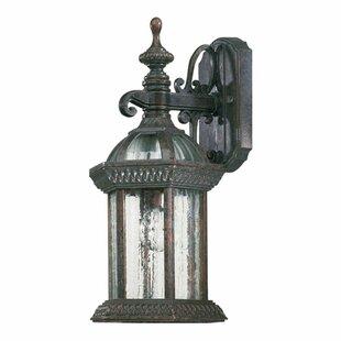 Alcott Hill Kason 1-Light Outdoor Wall Lantern