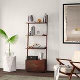 Carlucci 69'' H x 24.75'' W Ladder Bookcase