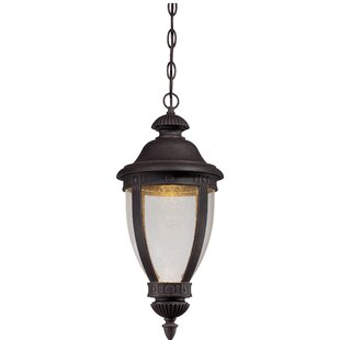 Best Reviews Autry 1-Light Outdoor Hanging Lantern By Darby Home Co