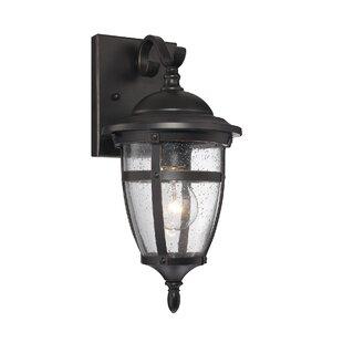 Alcott Hill Harty 1-Light Outdoor Wall Lantern