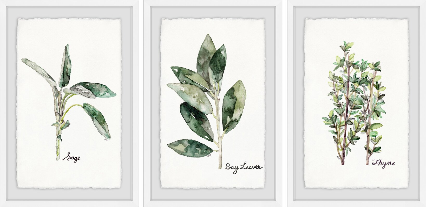 'Herb Trio Triptych' 3 Piece Framed Watercolor Painting Print Set