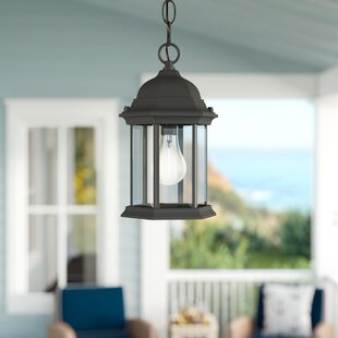 Breakwater Bay Frederica 1-Light Outdoor Hanging Lantern