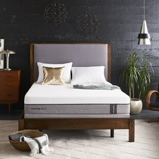 TEMPUR-Legacy® 10 Plush Tight Top Mattress by Tempur-Pedic