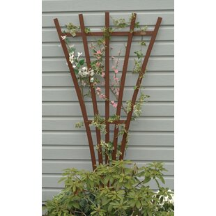Charlton Home Eggleston Highwood® Traditional Wood Fan Trellis