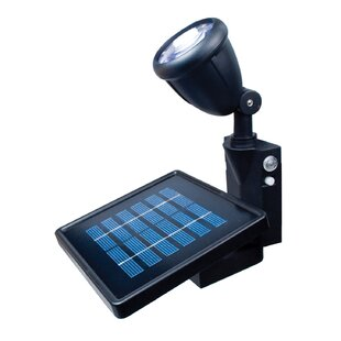 Bernd 1-Watt LED Solar Power Dusk to Dawn Battery Operated Outdoor Security Spot Light