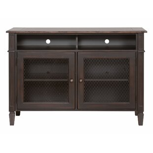 Vedika 2 Door Accent Cabinet b..