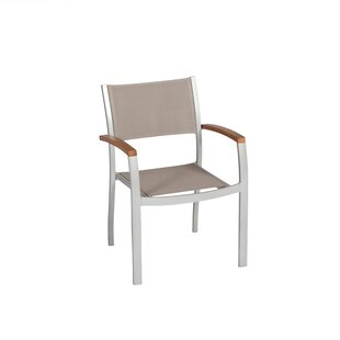 Sakho Armchair (Set Of 2) By Sol 72 Outdoor