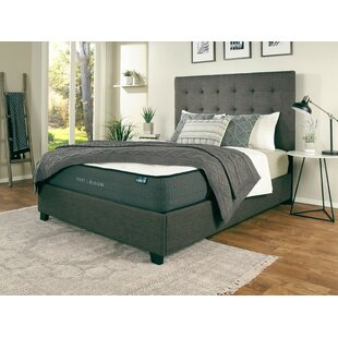 Best Almendarez Upholstered Platform Bed with Mattress by Darby Home Co Reviews (2019) & Buyer's Guide