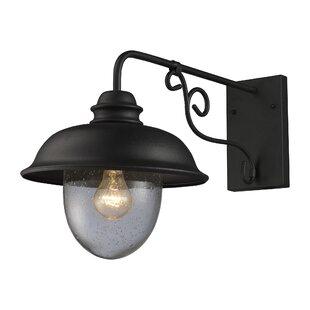 Gracie Oaks Ying Rustic 1-Light Outdoor Barn Light
