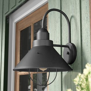 Longshore Tides Castro 1-Light Outdoor Barn Light