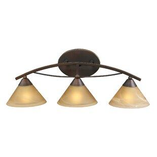World Menagerie Beecroft 3-Light Glass Shade Vanity Light