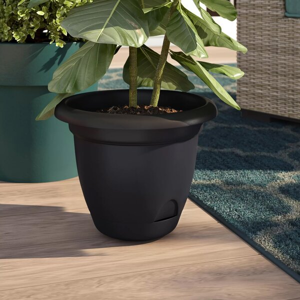 Details about  /Self-watering Plant Flower Pot Wall Hanging Plastic Planter House Garden Cute