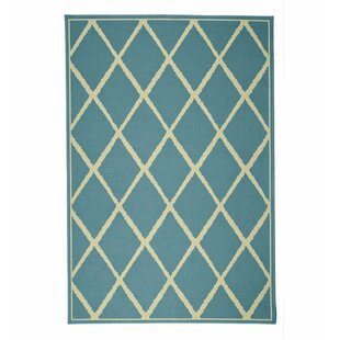 Lattice Surry Indoor/Outdoor Area Rug