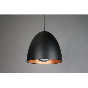 1-Light Cone Pendant by Seed Design