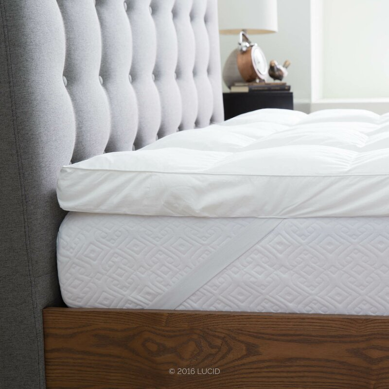 The Twillery Co Trahan 3 Down Alternative Polyester Mattress