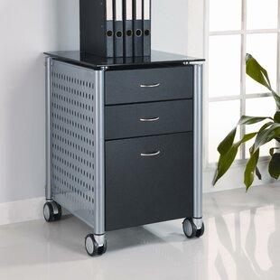 Winston Porter Irving 3-Drawer Mobile Vertical Filing Cabinet