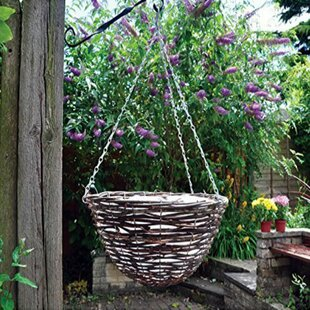 Harless Rattan Hanging Basket By Sol 72 Outdoor