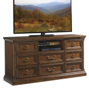 Coventry Hills Provincetown TV Stand for TVs up to 60