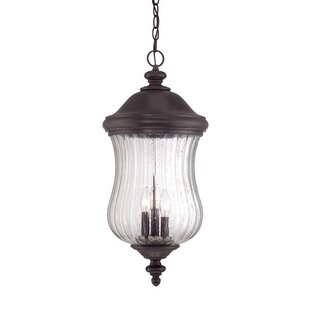Fleur De Lis Living Berwyck 3-Light Hanging Lantern