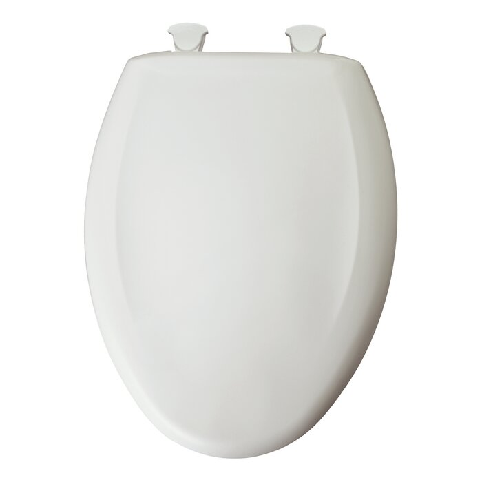 Outstanding Elongated Toilet Seat Ibusinesslaw Wood Chair Design Ideas Ibusinesslaworg