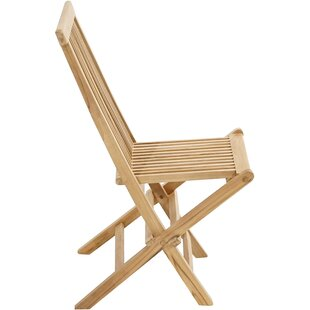 Briarcliffe Folding Dining Chair (Set Of 2) By Sol 72 Outdoor