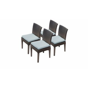 Tegan Patio Dining Chair with Cushion (Set of 4)