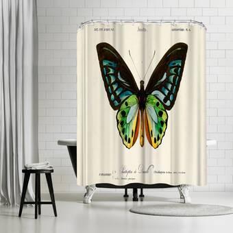 Beachcrest Home Fairhill Single Shower Curtain Wayfair