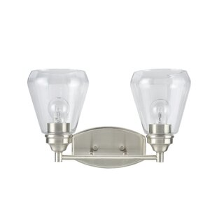 Crosson Transitional Metal 2-Light Vanity Light by Darby Home Co