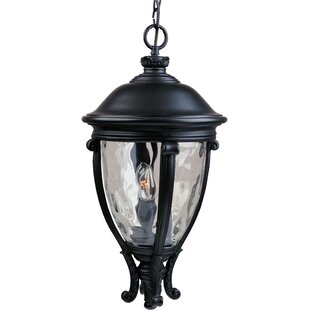 Astoria Grand Ironstone 3-Light Outdoor Hanging Lantern