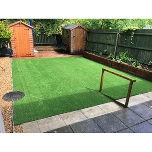 Summer Floor Cypress Grass By The Seasonal Aisle