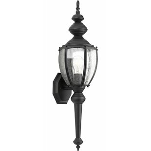 Triplehorn 1-Light Metal Sconce By Alcott Hill Outdoor Lighting