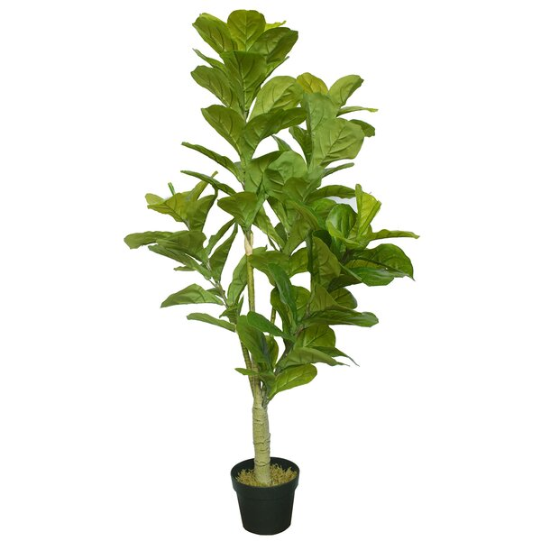 Real Touch Silk Fiddle Leaf Fig Tree In Pot Reviews Birch Lane