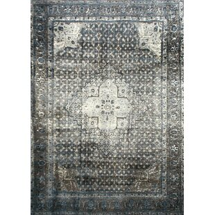 gray and white rug. Pascoe Blue/Grey \u0026 Silver Area Rug Gray And White