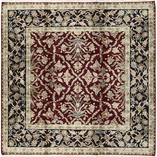 Read Reviews One-of-a-Kind Hand-Knotted Wool Red/Black Indoor Area Rug By Bokara Rug Co., Inc.
